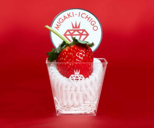 Migaki Ichigo Erdbeere | Magazin Freshbox